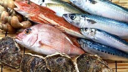 瀬戸内海の豊富な前どれの魚